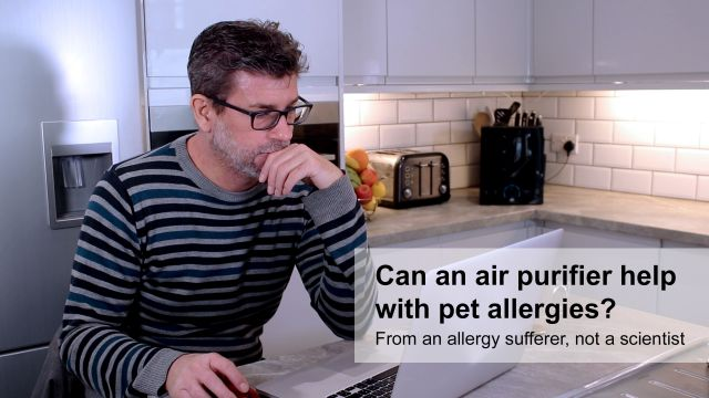 pet-allergy-featured-image